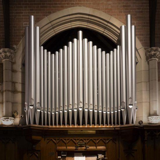 Organ Focus Lighting (1)